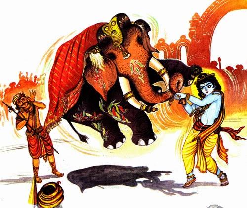 krishna-kuvalayapidam