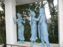usha-aniruddha-wedding