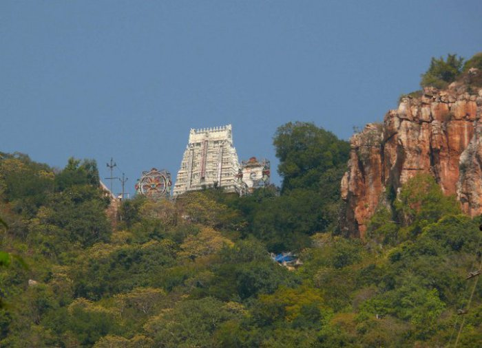 thirumala-hill