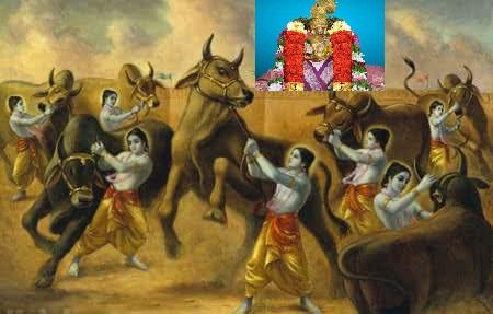 krishna-7-bulls-azhwar
